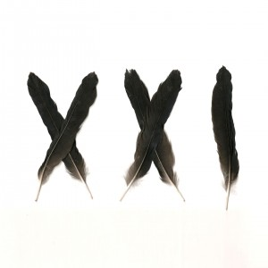 xx1cover